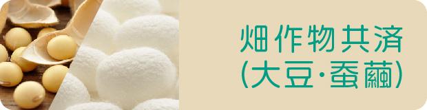 畑作物共済(大豆・蚕繭)